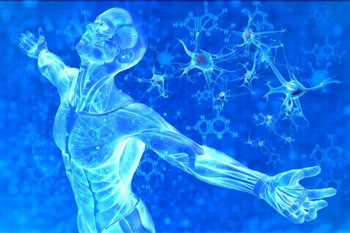 美容成分としてのヒト幹細胞の意義と効果について